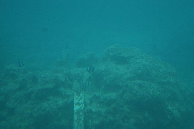 07.08海中展望台2