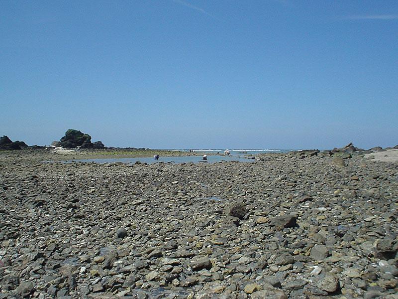 0704211小浜の先の浜