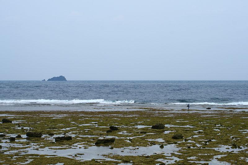 07.06笠利崎の浜