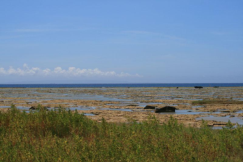 07.07大瀬海岸