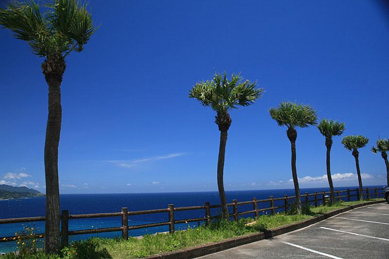 07.07大浜海浜公園展望台より